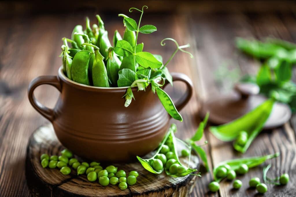 roślinne białko