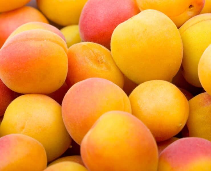 morele owoce